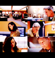 3x01- Kill Ari - ncis fan art