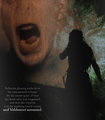 Bellatrix&Voldemort