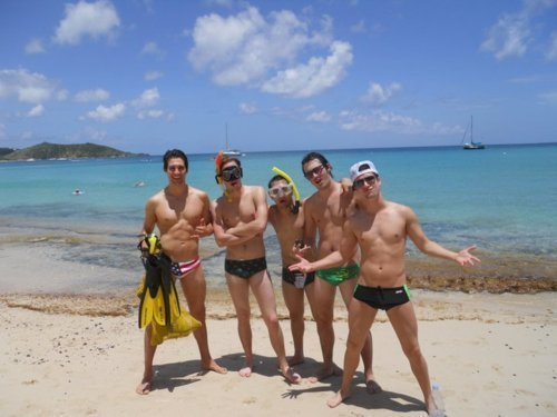 Big Time Rush wallpaper possibly with a bikini and a bather entitled Big Time Rush in Speedo's