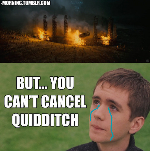 But wewe can't cancel quidditch!