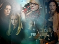 Cast CM - criminal-minds wallpaper