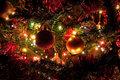 Christmas - christmas photo