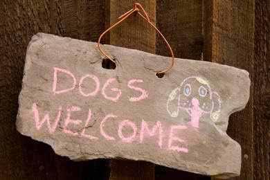 chó Welcome !