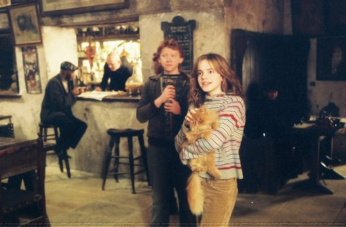 Hermione Granger wallpaper containing a birreria, brasserie and a drawing room titled Harry Potter and the Prisoner of Azkaban