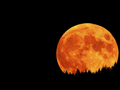Lunar Eclipse - moon photo