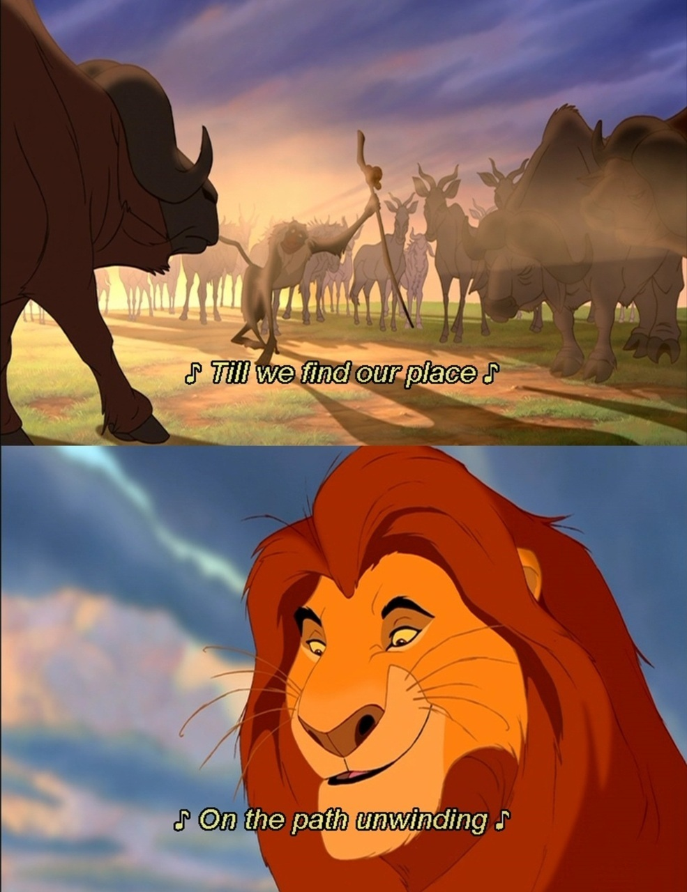 Quotes The Lion King Photo 22918569 Fanpop