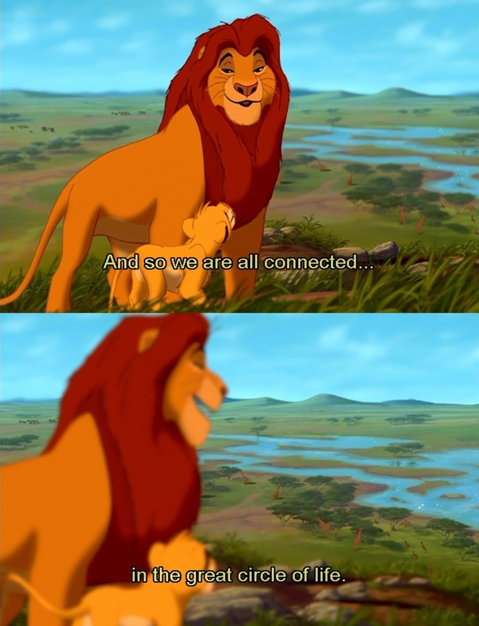 Quotes - The Lion King Photo (22918591) - Fanpop