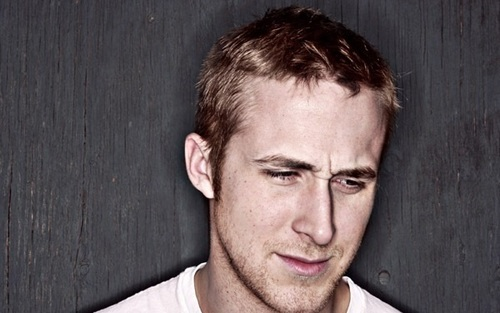 Ryan gansje, gosling