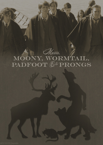 The Marauders :))