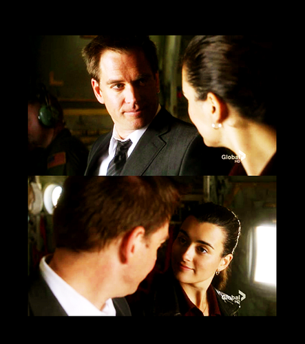 Tony and Ziva - ncis Fan Art