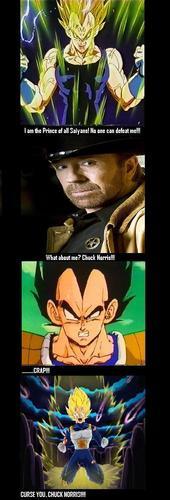 Vegeta vs Chuck Norris