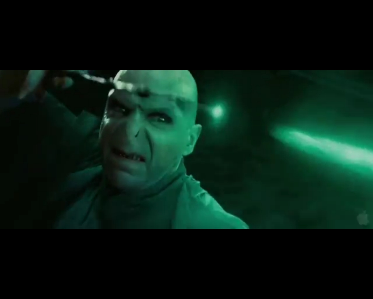 Voldemort duelling harry harry potter photo 22958506 for Harry elder