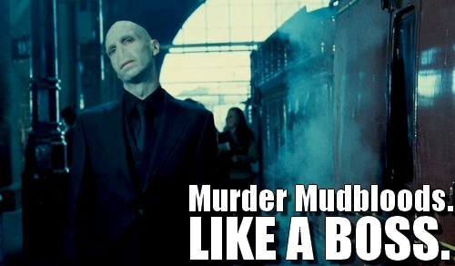 Voldemort- Like A Boss