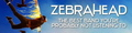 banner - zebrahead photo