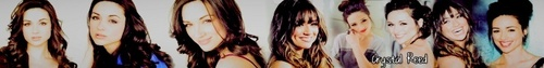 crystal reed banner;