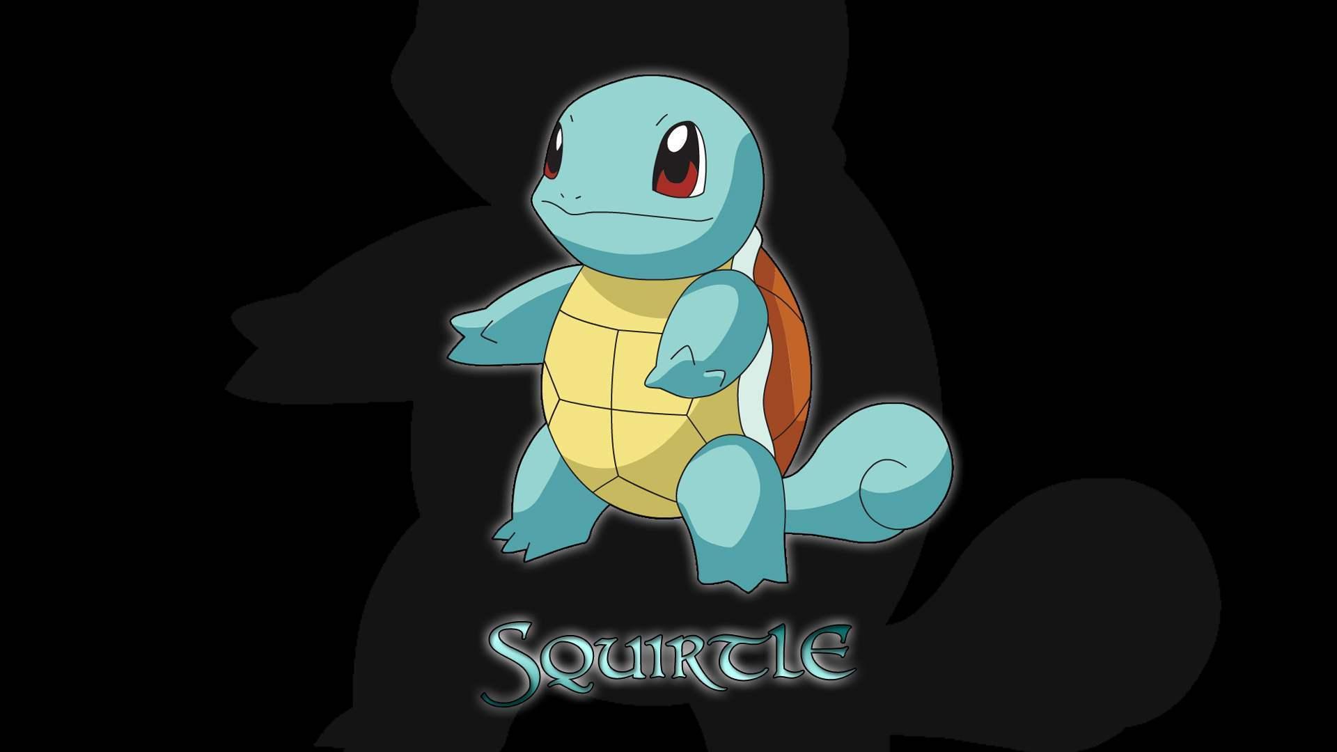 Squirtle Water Type Pokemon Wallpaper 22908332 Fanpop