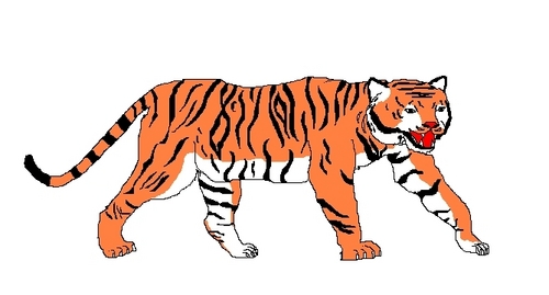 tiger-i draw it