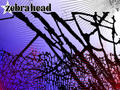 zebrahead  - zebrahead photo