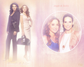 Rizzoli & Isles - rizzoli-and-isles wallpaper