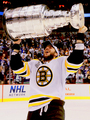 David Krejci and the Stanley Cup - 2011