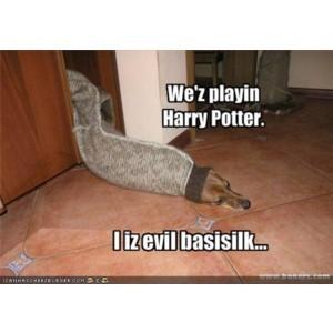 Harry Potter Funnies!