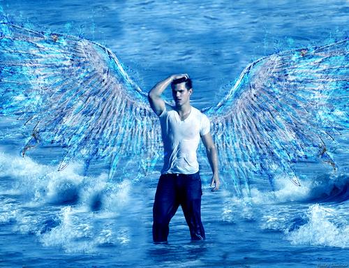 Taylor Lautner ( Jacob Black )