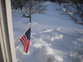 U.S. Flag  Winter - united-states-of-america photo