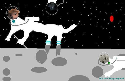 WOLVES, IN SPACE!, ON THE MOON, IN l'espace