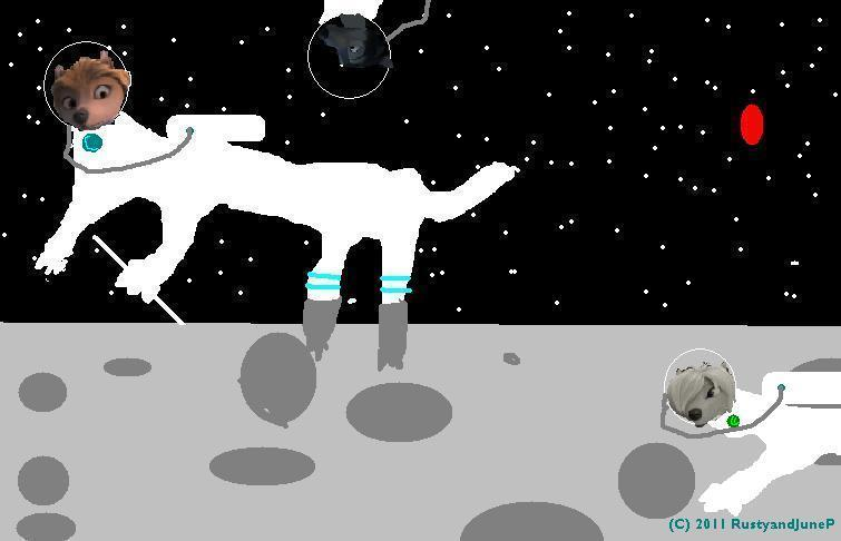 WOLVES, IN SPACE!, ON THE MOON, IN SPACE