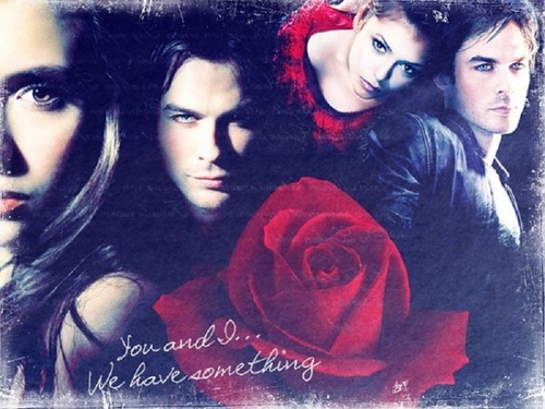 damon and elena - damon-and-elena Wallpaper