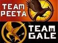 gale or peeta