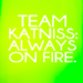 team katniss - katniss-peeta-and-gale icon
