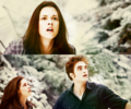 :D - twilight-series photo