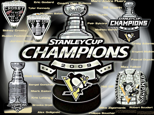 2009 Stanley Cup Champions