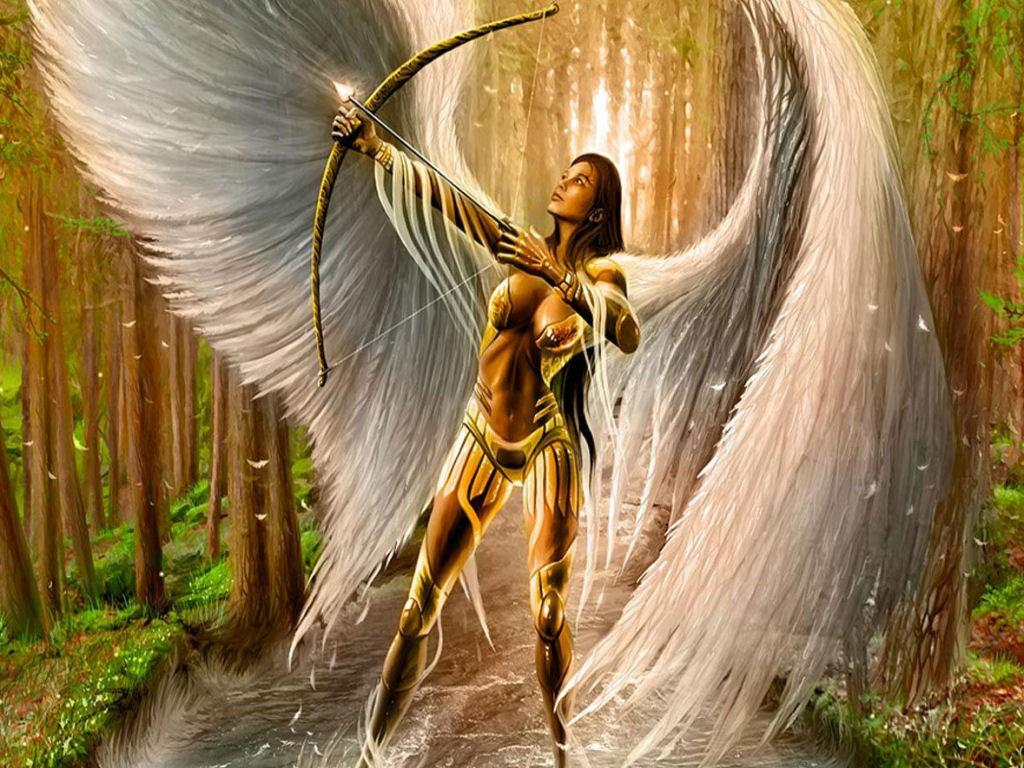 ángel Warrior