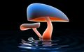 Blue Mushroom_Reflection