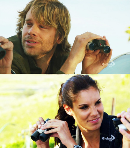 NCIS: Los Angeles wallpaper titled Deeks and Kensi