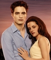 Hq BreakingDawn Calendar Cover-1 - twilight-series photo