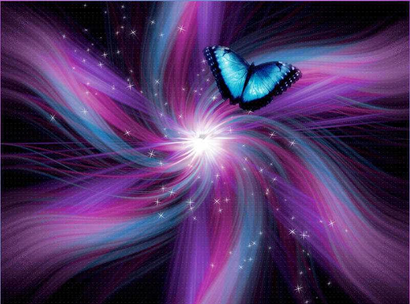 Indigo Butterfly Butterflies Photo 23164679 Fanpop