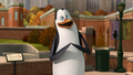 Kowalski's Happy!