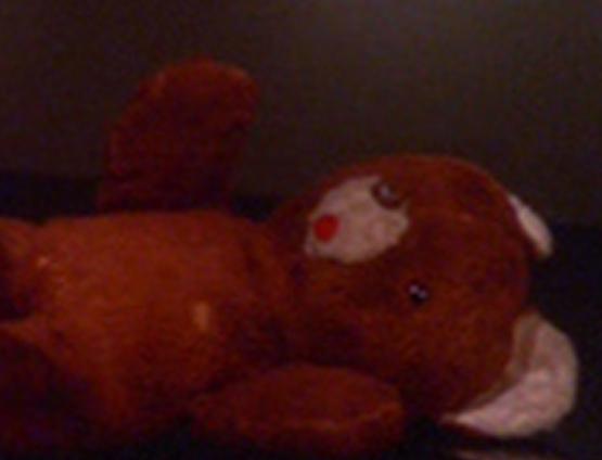 Kukalaka-Julian-s-Teddybear-julian-bashir-23128532-555-424.jpg
