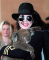 MJ with a koala - michael-jackson photo