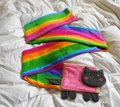 Nyan cat scarf!!!!
