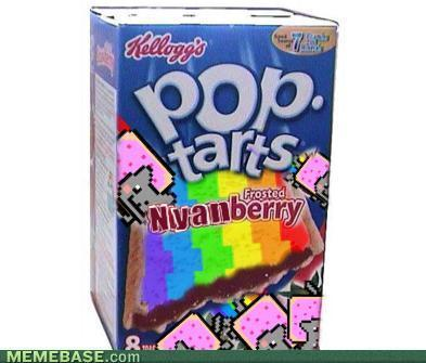 Nyanberry Poptarts, Anyone?