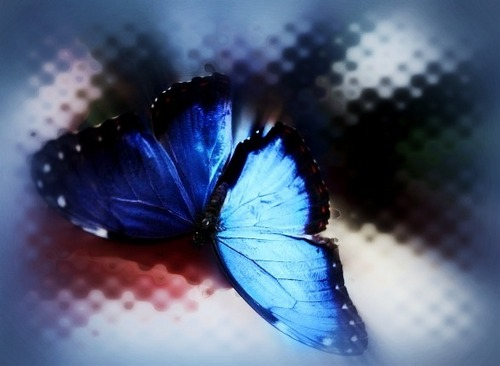 Pictures made Von me with Picnik =)