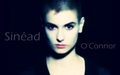 Sinéad O'Connor wallpaper - sinead-oconnor wallpaper