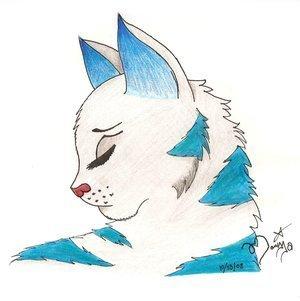 Snowfur, bluestar' sis