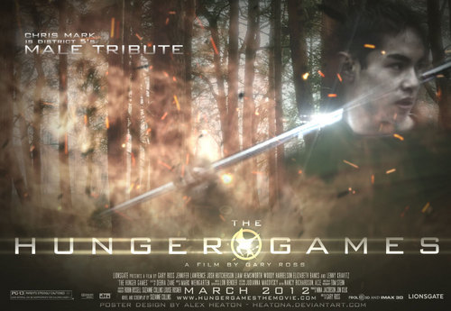 The Hunger Games fanmade movie poster - District 5 Tribute Boy