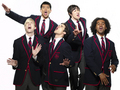 Warblers album art outtakes!