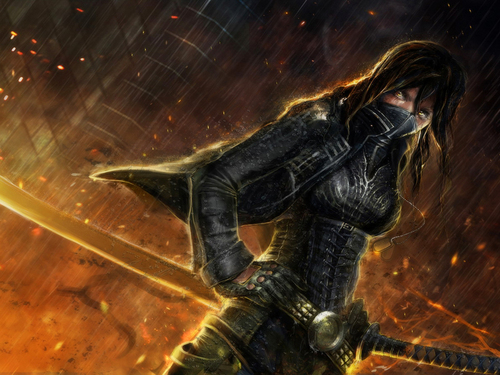 Fantasy wallpaper with a breastplate titled Warrior Ninja